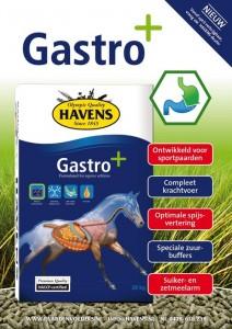 havens-adv-gastro_1