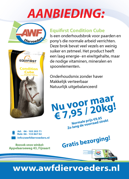 AANBIEDING_condition_cube